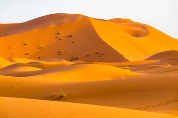 Beautiful landscape view of dunes Erg Chebbi, Sahara Desert, Merzouga, Morocco in Africa