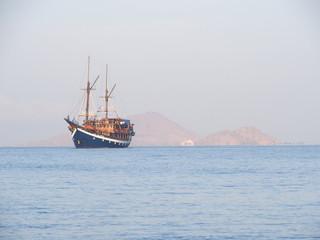 Piraten?