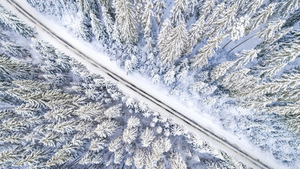 Aerial viwe of road cutting through snow covered forest. Idyllic winter scenery