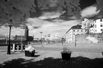 Coast at the city hall of Stockholm, Sweden