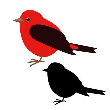 cardinal bird , vector illustration , flat style, black silhouette