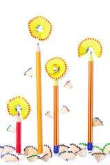 four pencil flowers