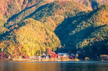 Autumn colors at Fujikawaguchiko - a resort town in the northern foothills of Mount Fuji, Japan