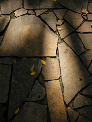 autumn stone pavement with shadows
