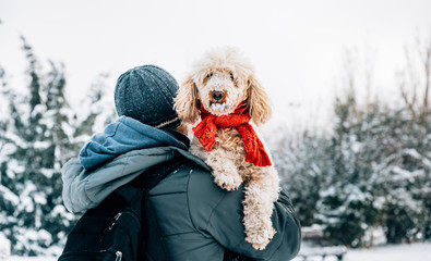 Happy pet and his owner having fun in the snow in winter holiday season. Winter holiday emotion. Man holding cute puddle dog with red scarf. Film filter image.