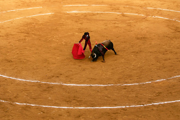 Spanish bullfighter Salvador Vega performs a pass during a bullfight in Marbella