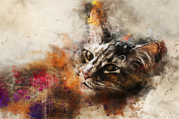 Cat art. Beautiful abstract cat artwork - watercolor drawing, mixed media. The face of a cat in a contemporary style of abstract art.