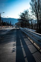 Möwen auf der Brücke
