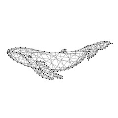 Whale swimming under water from abstract futuristic polygonal black lines and dots. Vector illustration.