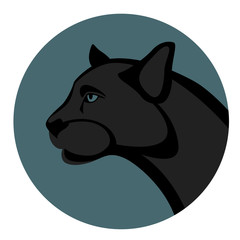 cougar head vector illustration , flat style ,profile