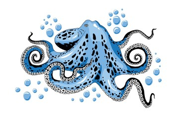 Cartoon skye blue octopus clip-art isolated on white background illustration