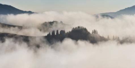 autumn morning in the Carpathian mountains. scenic foggy dawn