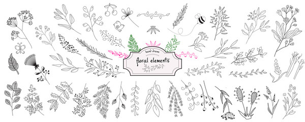 Hand drawn collection of rustic and floral design elements. Tree branches, flowers, plants and leaves ink silhouettes. Isolated vector on white background Fototapete