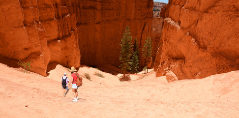 Couple hiking in the red mountains on summer vacation. People with backpacks hiking on  Navajo Loop Trail. Bryce Canyon National Park, Utah, USA