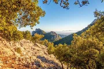 Puig Major Mountain, Mallorca, Spain