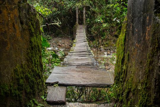 La bellissima Valle del Cocora, Colombia