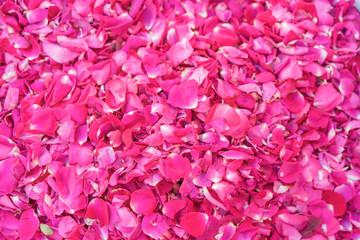 Sprinkled fresh rose petals