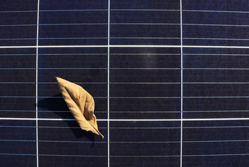 Dry Leaf on Solar Panel Surface Top View