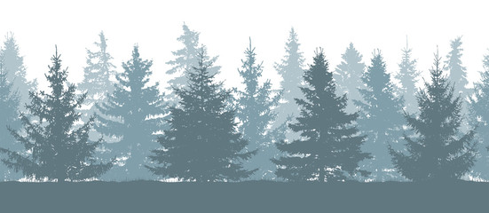 Seamless forest in winter, silhouette of fir trees. Vector illustration.