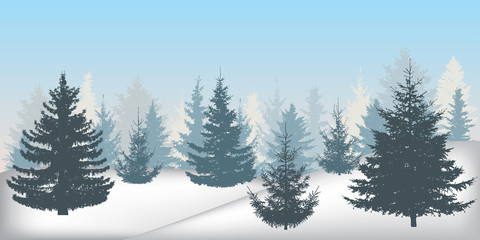 Silhouette of winter snowy forest, beautiful spruce trees (fir trees). Vector illustration