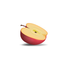 realistic red half apple isolated on white background. vector illustrations