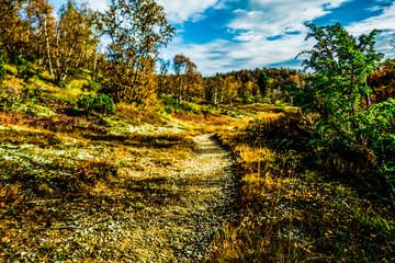Kevo Trail Finnland