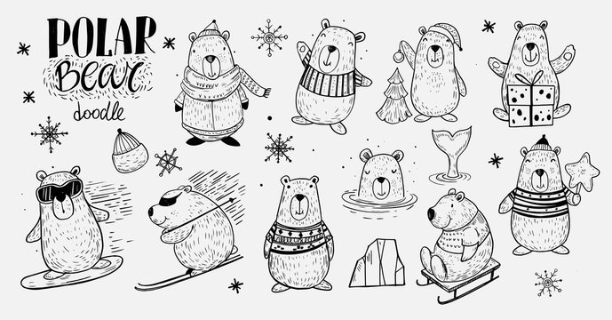 Set of the Polar Bear in winter activity: snowboarding, skiing, sledding. Doodle style. Isolated vector