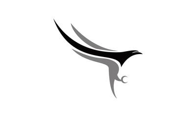 focus flying falcon logo