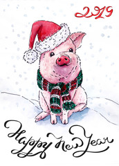 New Year's Pig_2019