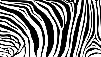 stripe animals jungle texture zebra vector black white print