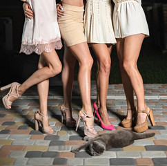 Women's legs in shoes with heels