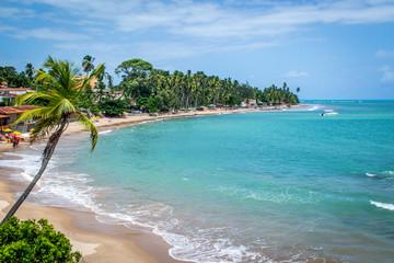 Beaches of Brazil - Maragogi, Alagoas State
