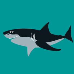 shark  vector illustration ,flat style ,profile
