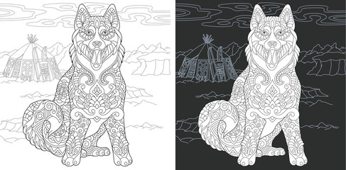Coloring page with Siberian Husky (Alaskan malamute) dog