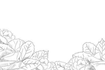 Sketch of decorative roses with leaves on the bottom by jziprian