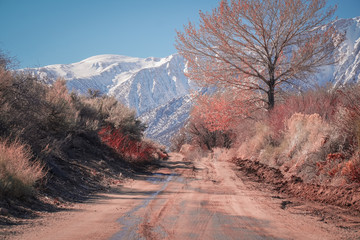 Dirt trail in Californias Sierra Mountains.  Alabama Hills outside of Lone Pine during the winter season.