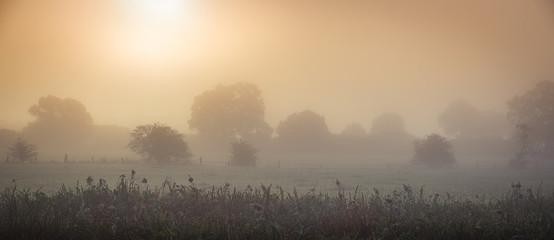 Nebel in der Leinemsch bei Hannover, Stöcken an einem Herbsttag