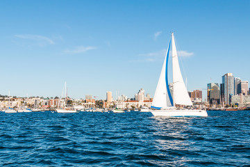 A sailboat in the San Diego harbor with the downtown skyline in the background.