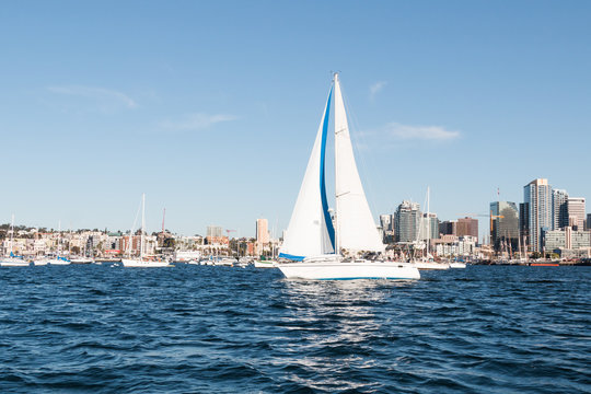 A sailboat in San Diego bay with the downtown skyline in the background.