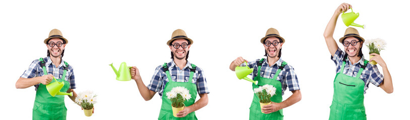 Funny gardener with watering can isolated on white