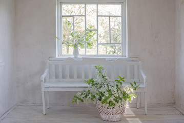 spring flowers in basket on white wooden bench