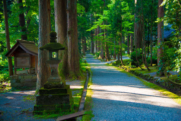 Oyama Shrine in Tateyama-machi, Japan. Japan is a country located in the East Asia.