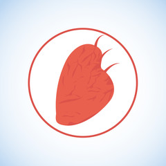 Red Human Heart Flat Vector Icon, Logo or Symbol