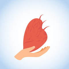 Human Heart in Hand Flat Vector Icon or Logo