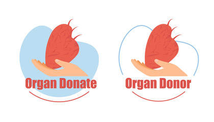 Organ Donor, Heart Donation Flat Vector Icons Set
