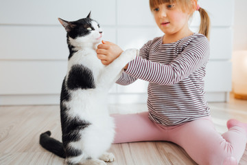 Little girl playing with cat