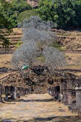 Laos - Wat Phou