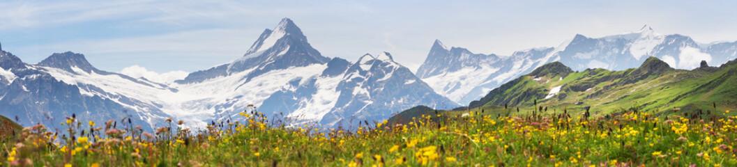 Alpine peaks of Grindelwald and Jungfrau. Landskape background of Bernese highland. Alps, tourism, journey, hiking concept. Wall mural