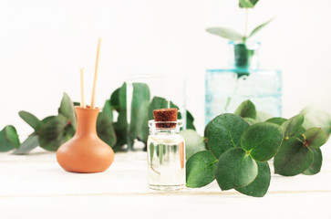 Set of bottles with essential oils on table with green fresh eucalyptus plant leaves.