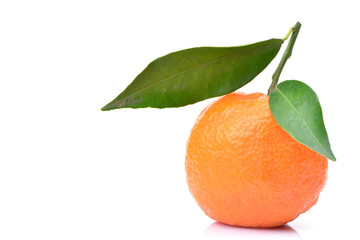 Mandarin fruit on white background
